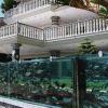 Стена из аквариумов